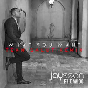 Jay Sean的專輯What You Want (Team Salut Remix)