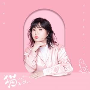 王七七的專輯貓