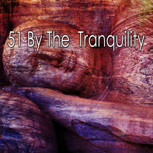 Baby Sleep的專輯51 By the Tranquility