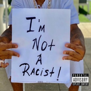 Album I'm Not a Racist from Plies