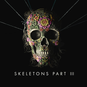 Album Skeletons: Part 3 from Missio