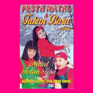 Album Album Pesta Natal & Tahun Baru from Leony