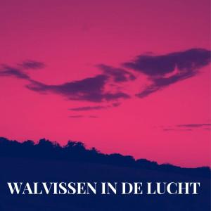 Album Walvissen In De Lucht (Explicit) from Nino