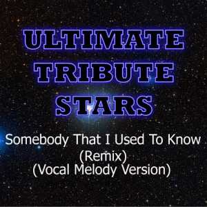 Ultimate Tribute Stars的專輯Gotye feat. Kimbra - Somebody That I Used To Know (Remix) (Vocal Melody Version)