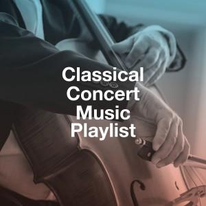 Album Classical Concert Music Playlist from Classical Lullabies