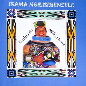 Album Igama Ngilisebenzele from Nothembi Mkhwebane