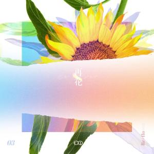 [Re:flower] PROJECT #3 dari EXID