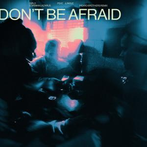 Album Don't Be Afraid (feat. Jungle) (Picard Brothers Remix) from Diplo