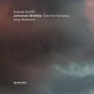 Andras Schiff的專輯Brahms: Sonata for Clarinet and Piano No. 2 in E Flat Major, Op. 120 No. 2: 3. Andante con moto - Allegro