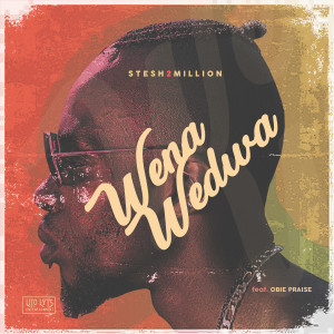 Album Wena Wedwa from Stesh2Million