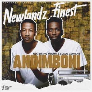 Album Andimboni from Newlandz Finest