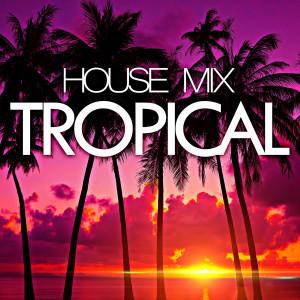 Remixed Factory的專輯Tropical House Mix