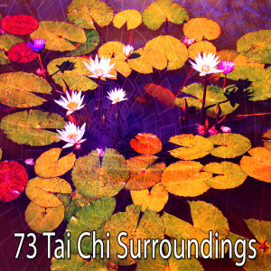 Album 73 Tai Chi Surroundings from Asian Zen Spa Music Meditation
