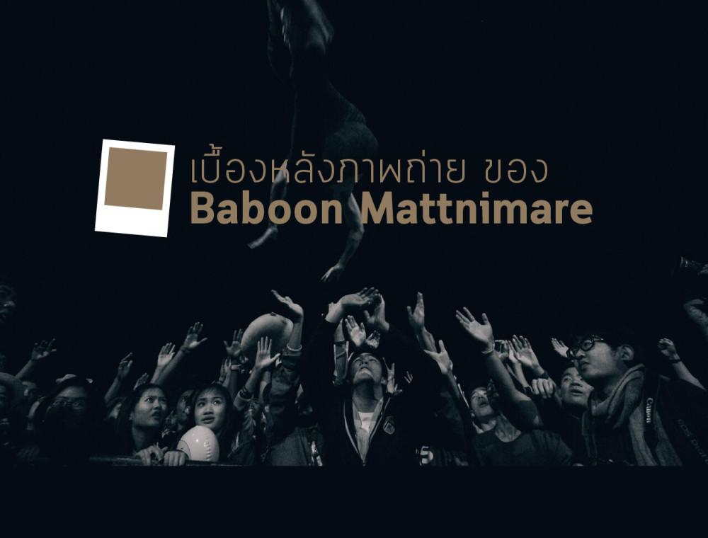 เรื่องเล่าหลังเลนส์ ของ บาบูน Mattnimare