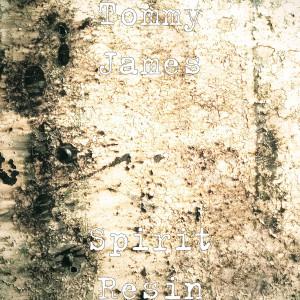 Album Spirit Resin from Tommy James