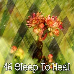 Rockabye Lullaby的專輯46 Sleep to Heal