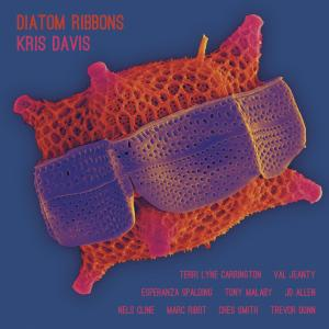 Listen to Golgi Complex (The Sequel) [feat. Nels Cline, Marc Ribot, Trevor Dunn, Val Jeanty & Terri Lyne Carrington] song with lyrics from Kris Davis