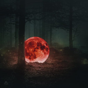 Album Red Moon: The Piano Forest from MAKTUB
