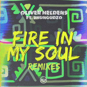 Listen to Fire In My Soul (Leandro Da Silva Remix) song with lyrics from Oliver Heldens