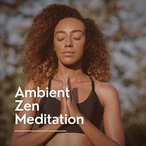 Deep Sleep Music Collective的專輯Ambient Zen Meditation
