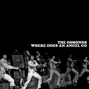 Album Where Does an Angel Go from The Osmonds