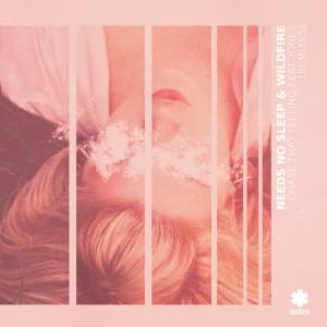 Album Chase That Feeling (Remixes) from JONES