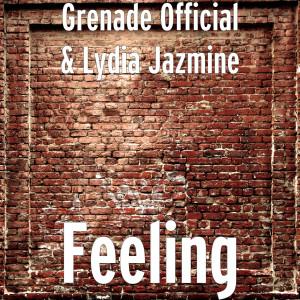 Album Feeling (Explicit) from Grenade Official