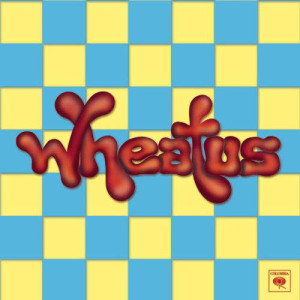 Listen to Teenage Dirtbag (Explicit Album Version) song with lyrics from Wheatus
