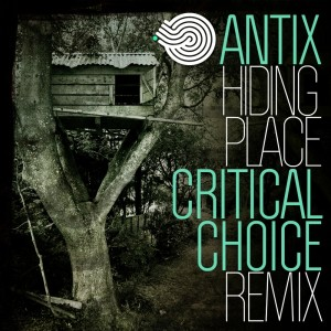 Album Hiding Place (Critical Choice Remix) from Antix