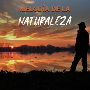 Melodía De La Naturaleza