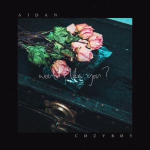 Album would i like you? from Aidan