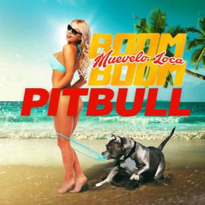 收聽Pitbull的Muévelo Loca Boom Boom歌詞歌曲