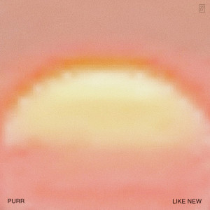 Album Giant Night from Purr