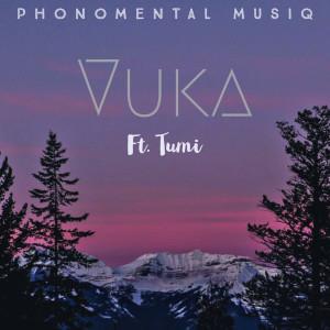 Album Vuka from Tumi