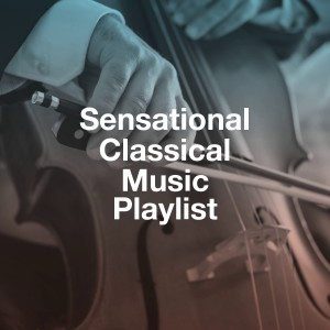 Album Sensational Classical Music Playlist from Classical Guitar Masters