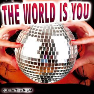 Album The World Is You from DJ In the Night