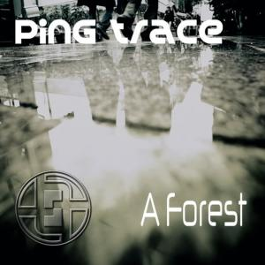 Album A Forest from Ping Trace