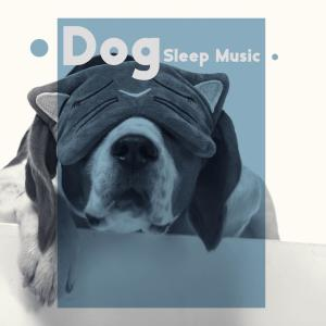Trouble Sleeping Music Universe的專輯Dog Sleep Music (Instrumental Music for a Good Sleeping Positions (Sleep Under Bed))