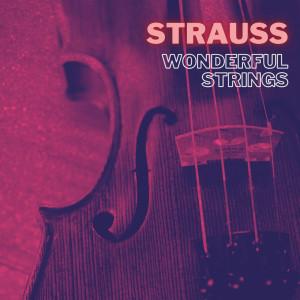 Album Strauss Wonderful Strings from Johann Strauss