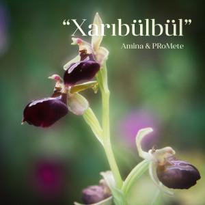 Album Xarıbülbül from Promete
