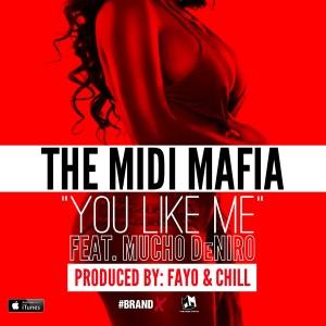 The Midi Mafia的專輯You Like Me (feat. Mucho Deniro) - Single