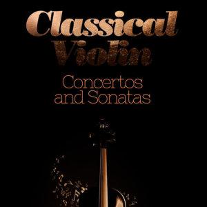 Listen to Violin Sonata No. 1 in G Major, Op. 78: I. Vivace ma non troppo song with lyrics from Igor Oistrakh