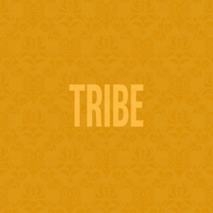 Listen to Tribe song with lyrics from Jidenna