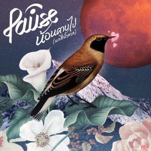 อัลบัม น้อนคาบไป (นกสีน้ำตาล) - Single ศิลปิน Pause