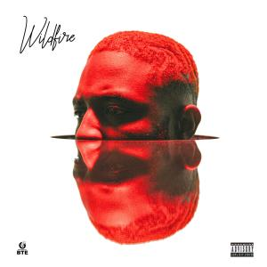 Album Wildfire (Explicit) from PrettyBoyDO