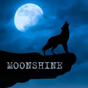 Album Воем На Луну from Moonshine