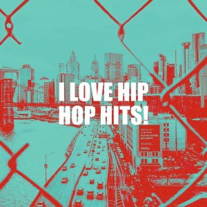 Album I Love Hip Hop Hits! from Hip Hop All-Stars