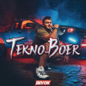 Album Tekno-Boer from Bevok