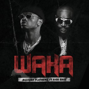 Listen to Waka song with lyrics from Diamond Platnumz