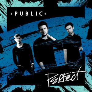 收聽Public的Perfect歌詞歌曲